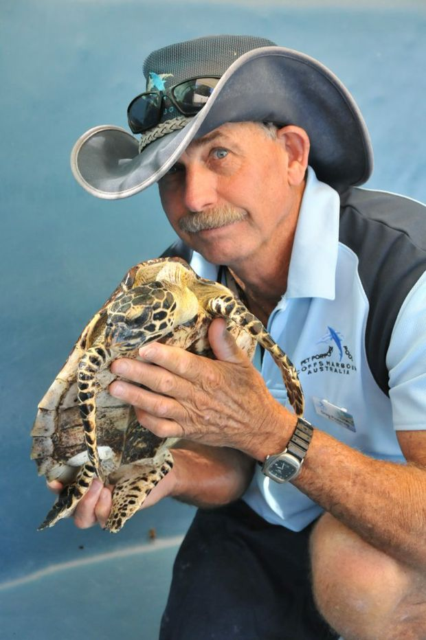The Pet Porpoise Pool's Greg Pickering with one of the Hawkesbill Sea Turtles currently in the pool's care.