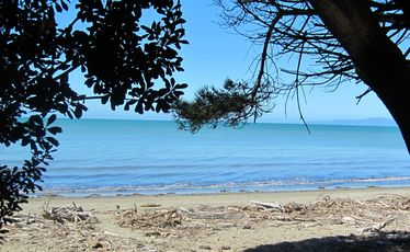 Golden Bay's beaches await... you just have to get over the