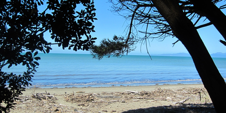 Golden Bay's beaches await... you just have to get over the hill first.