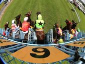 IPSWICH families can embrace the last day of the holidays in the sunshine while enjoying the action at Ipswich Turf Club on Monday.