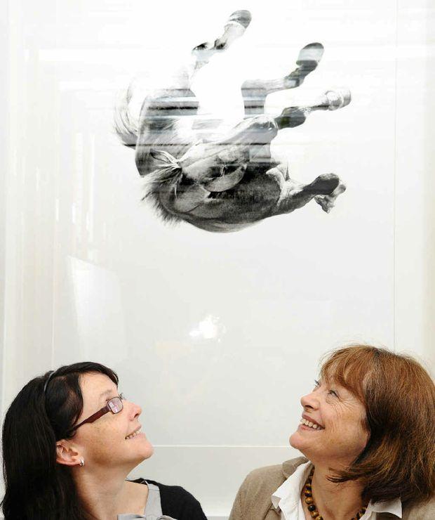 Grafton gallery curator Angela de Martino Rosaroll with director Jude McBean in front of 2006 JADA acquisition Falling August by Michael Zavros. Photo: Adam Hourigan