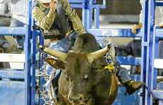 Grafton bull rider Sonny Gray, 20 has a go at riding Hot Shot at the Grafton Show.