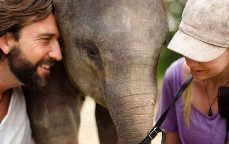 Bona is being cared for by environmentalists who hope to raise enough money to provide one year's care for the orphaned elephant.