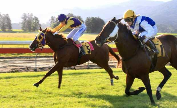 Isajay (5) and Danewin Girl (1) in race 6 at Murwillumbah Races last year.