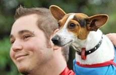 Colin Cloete and fox terrier Pixie put on a super show at the RSPCA Million Paws Walk around The Gooseponds yesterday.