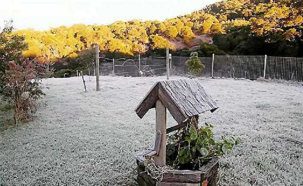 Ian Wright's lawn at Eungella during a particularly severe frost. Some Eungella residents say another big freeze is on its way this winter.