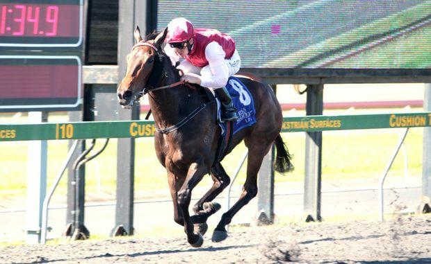 Corbould Park horse races.
