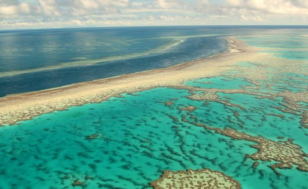 An aeriel view of Hardy Reef, Great Barrier Reef.
