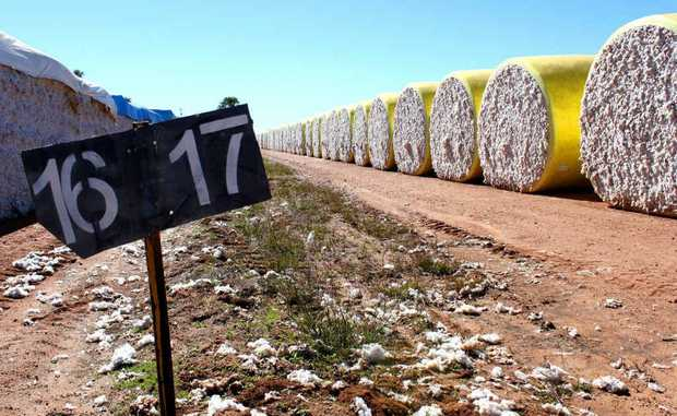 Cotton prices have shown slight gains.