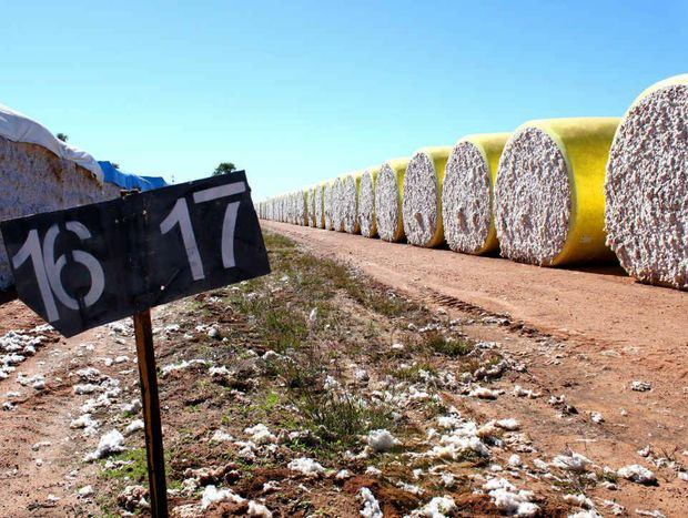 Cotton prices have shown slight gains.