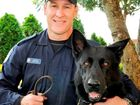 Jail time for punching officer, dog