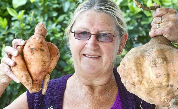 'Scoota' of Copmanhurst, with her chicken-shaped and 3.4 kg sweet potatoes