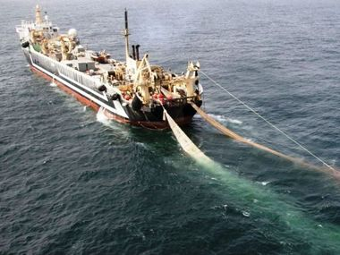Australia's largest recreational fishing lobby says the Gillard Government should not to grant a fishing permit to the super trawler FV Margiris.