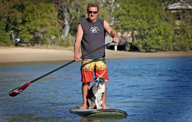 "Leo Davidson and ""Shebby"" the three legged dog go for a SUP on Currumbin Creek. Photo: Blainey Woodham / Daily News"