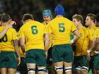 Wallabies are winless and pointless