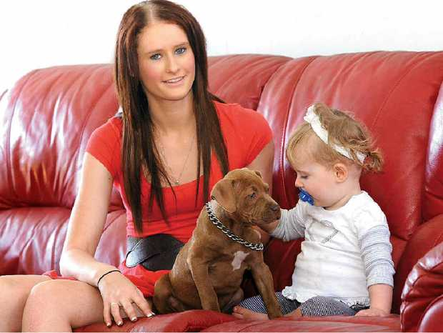 Natahlia Collins and her daughter Lailah-Rose Van Moolenbroek play with their pitbull puppy.