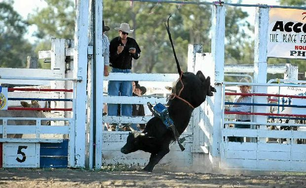 DOIN' TIME: The National Bucking Bulls Australia futurity and classic will be held at Killarney on September 1.