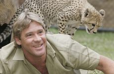 The Crocodile Hunter Steve Irwin.