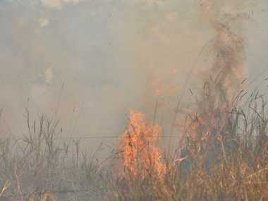 Bush fire at Murdering Creek Road, Peregian.