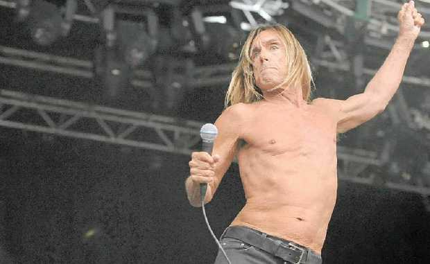 STILL WILD: Iggy Pop will bring a punk sensibility to Bluesfest 2013.