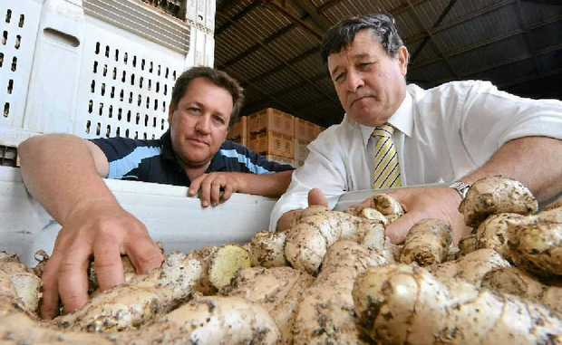 Australian Ginger Industry Association chairman Anthony Rehbein talks with Opposition agriculture and food security spokesman John Cobb.
