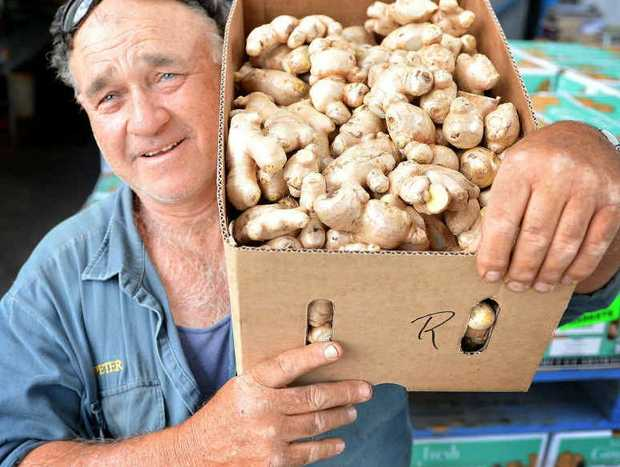 Peter Buchanan at the Gympie Packhouse with some Langshaw ginger ready for market.