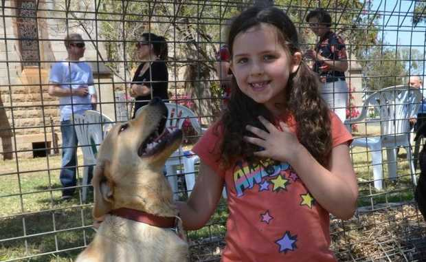 Madeline Gunthorpe with her labrador Miah at the Roma Pet Blessing on Sunday.