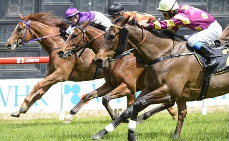 Toolbag, ridden by Terry Treichel, on the outside beats out Just So Bruno (centre) and Outrider in the XXXX Class 1 Hcp (1000m) at the Grafton races. Photo: Adam Hourigan