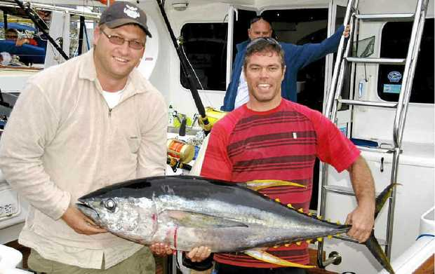 This 35kg yellowfin was caught out in 1600 fathoms by the crew of Black N Blue. Photo: Contributed