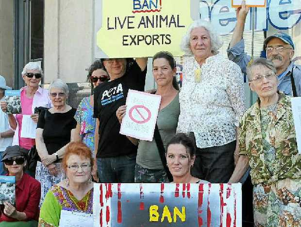 CALLING FOR BAN: Protestors outside Page MP Janelle Saffin's office, supporting her call for a ban to live meat exports.