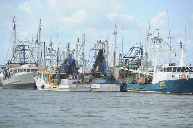 Queensland net fishers are encouraged to consider a buy back offer.
