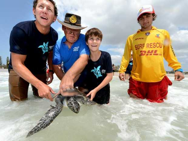 Tim Adams, Ron Potter, Josh Petty and Fletcher Rainford-Markarian release Macs the turtle at Kingscliff Beach.