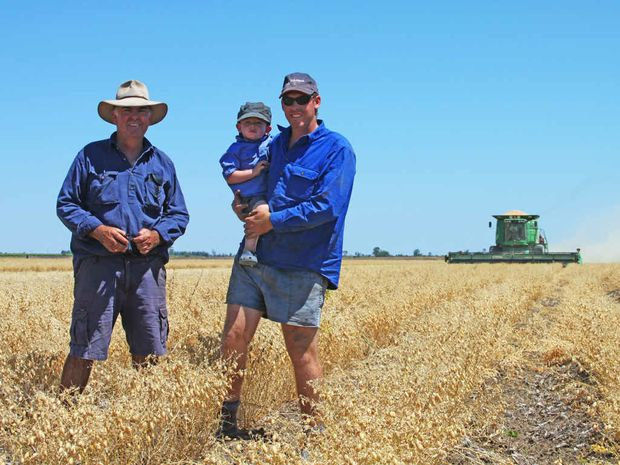 THREE GENERATIONS: Denis Kiely with his son Aaron and grandson Griffyn conduct chickpea harvest operations on Deneliza Downs east of Emerald.