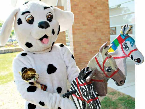 READY, SET: Daily Dalmatian hopes to take the Celebrity Cup for a fourth time this year.