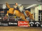 Bareback bronc riders ready to rumble at the Warwick Rodeo