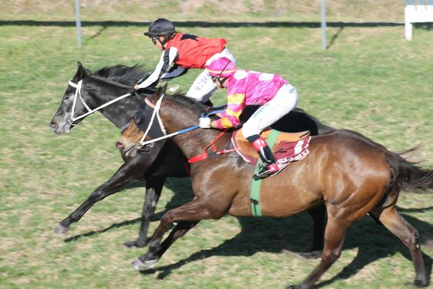 PAST THE POST: Melody O'Brien strectches out onboard Savage to take the Central Motors Holden Stanthorpe Cup. Photo Daniel Elliott / Stanthorpe Border Post