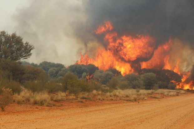 Mungallala is not being evacuated due to bushfires in the region, RFS said.