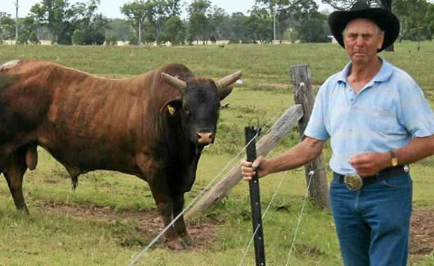 Veteran bull contractor Frank Biddle has come out in support of the handling of an incident involving his bull Buckle Up, which had to be euthanised on Saturday after a rodeo injury.