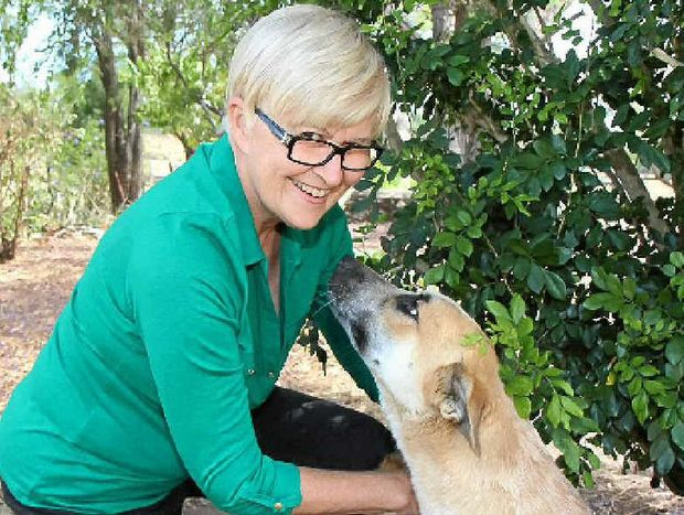 West Moreton Landcare member Barbara Cush removing a tick from her dog Lucky while Bluey tries to get her attention.