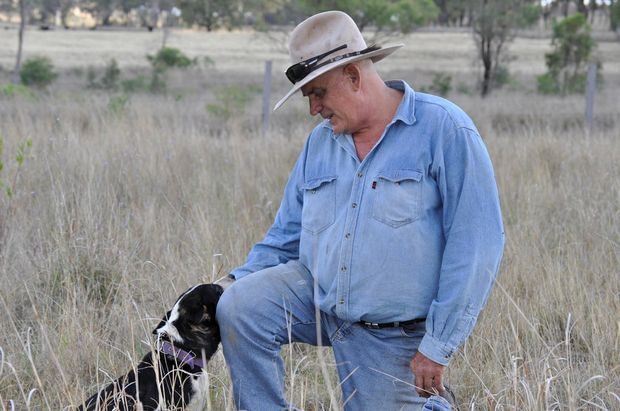 Cyril Stewart, president Coopers Gap Wind Farm Supporters Group, and dog Bonnie, on his property near Cooranga North, 650m from a proposed turbine.  Photo Gen Kennedy / Dalby Herald