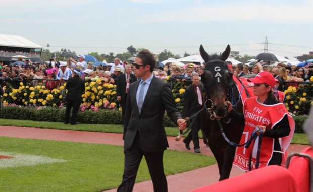 Fleur Blanch leads Fiorente in the Flemington parade yard before its 2nd place finish in the Melbourne Cup. Photo: Contributed. NO RESALE