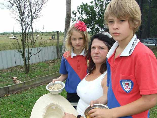 Judy Elliott and her grandchildren Izac and Atahlia Grennan are concerned clearing linked to a housing development nearby has reduced native bird numbers in the area.
