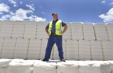Queensland Cotton Cecil Plains plant superintendent Ian Cesari with some of the 730,000 cotton bales ginned on the Darling Downs this year.