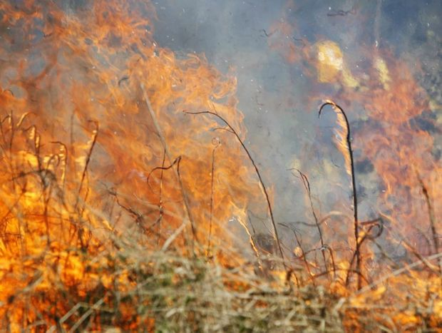 Authorities have increased the fire danger for the Tweed.