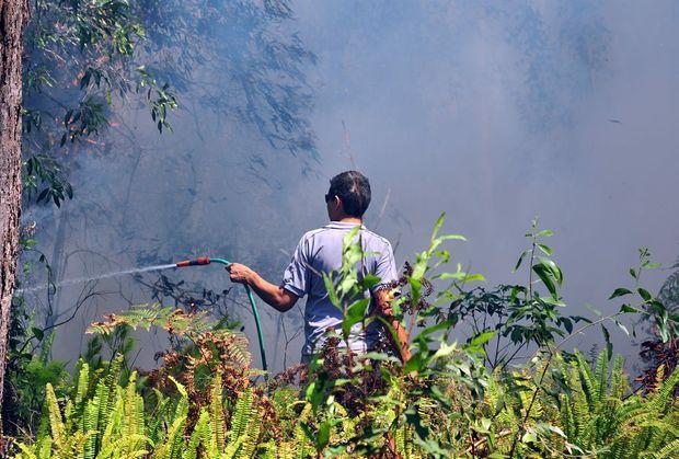 Greys Road Doonan fire threatens houses. Resident Rory Brennan hoses down bushland adjacent to his houseon Greys Road Doonan.