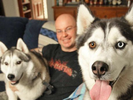 BEST FRIENDS: Jason Boseley loves his dogs Codee and Bandit so much he has changed his working arrangements to night shifts in order to look after them during the day when his wife is at work.