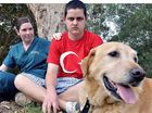 Family swamped with offers to take three-legged labrador