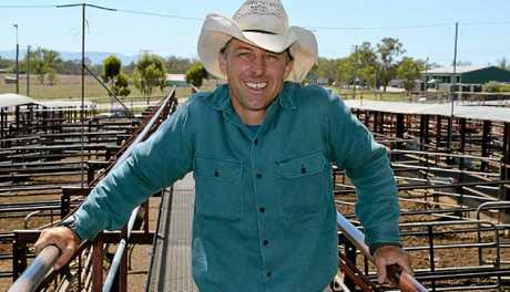 THE RUNNER: Jonathan Schlacher has been criss-crossing the catwalks at Warwick saleyards for 20 years.