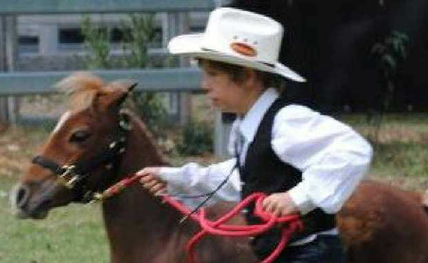 MINIATURE CHAMPION: Woodburn's Drew Humphris, 8, in action at the recent championships that saw him bring home a Golden Buckle.