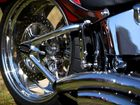 A MOTORCYCLIST stood up on foot pegs and then repeatedly exposed himself in full view of a female driver, police said.